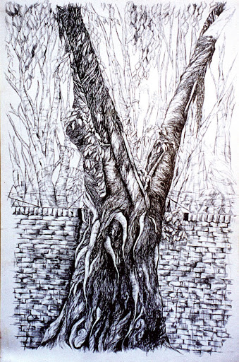 Pen and Ink: The Tree II