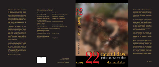 Book Cover: 22 Fateful Days