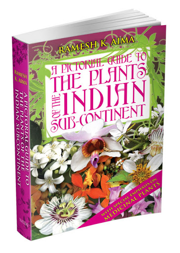 Book Cover: A Pictorial Guide to Plants of the Indian Sub-Continent