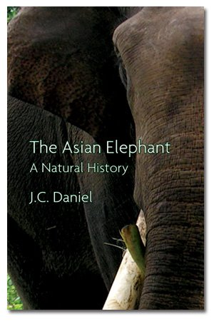 Book Cover: Asian Elephant